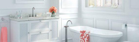 Plomberie paris : intervention dans la salle de bain